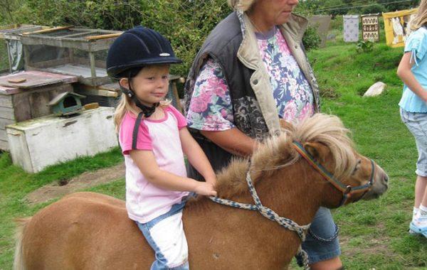 Reiten auf den Ponys